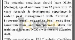 PARC Jobs