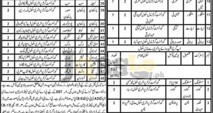 Education Department Balochistan Jobs