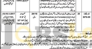 Forest Dpt Jobs
