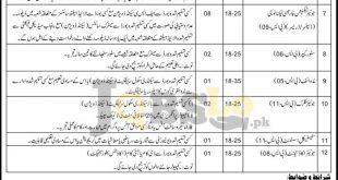 Health Dpt Lahore Jobs