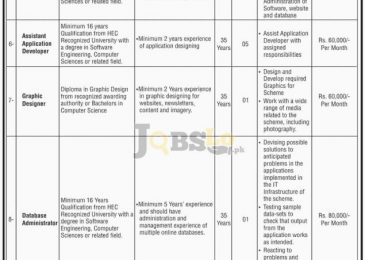 National Internship Program Jobs 2017 NTS Online Form Download nts.org.pk