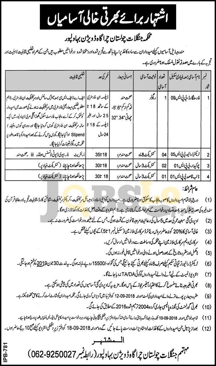 Forest Department Punjab Jobs 2018 Bahawalpur August Latest
