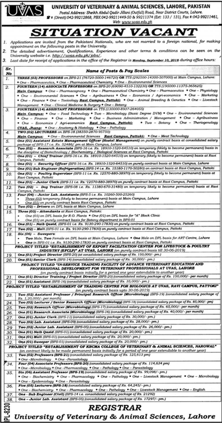 University of Veterinary and Animal Sciences Lahore Jobs 2018 UVAS Latest Vacancies