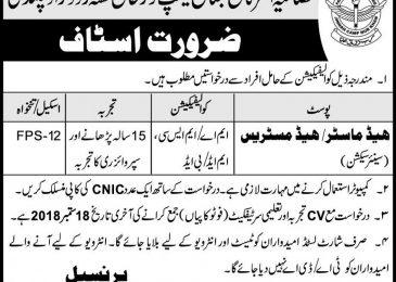 Fazaia Inter College Rawalpindi Jobs September 2018 For Principal