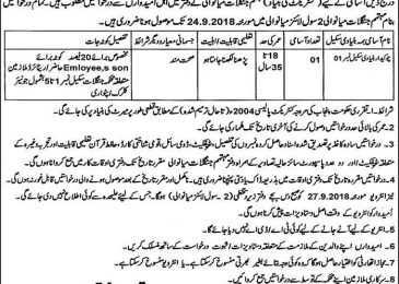 Forest Department Jobs in Punjab Sep 2018 Mianwali Latest For Chowkidar