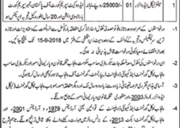 Legal Advisor Jobs in Multan 2018 Municipal Corporation Multan Latest
