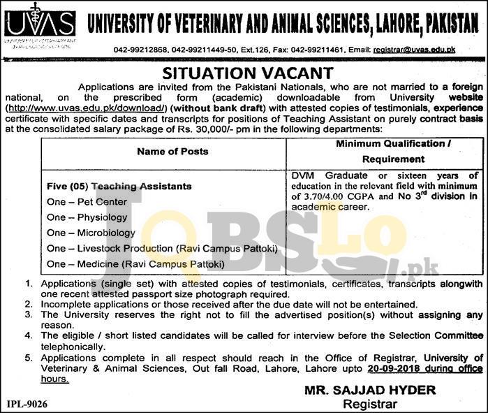 UVAS Lahore Jobs Sep 2018 Application Form Download