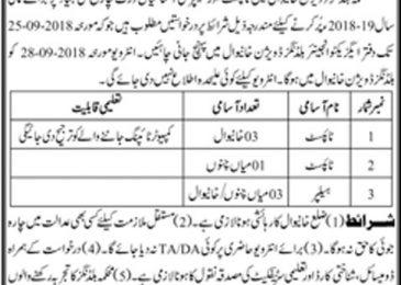 Jobs in Building Division Khanewal September 2018 For Typist