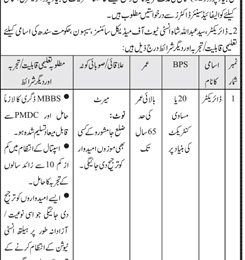 Jobs in Syed Abdullah Shah Institute of Medical Sciences Sehwan 2018 For Director