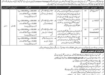 WAPDA Hospital Lahore Jobs 2018 Application Form Download For Consultants & Registrar