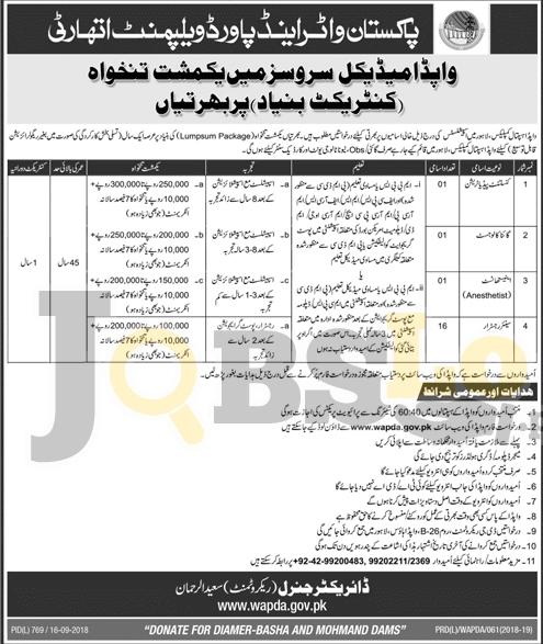 WAPDA Hospital Lahore Jobs 2018 Application Form Download For Consultants & Registrar