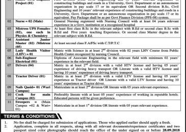 SBBU Sheringal Jobs 2018 Shaheed Benazir Bhutto University Peshawar Latest Career Advertisement