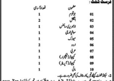 Jobs in Govt. Post Graduate College For Women Shadbagh Lahore 2018 For Teaching Staff