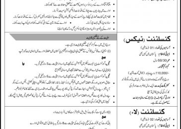 PO Box 2553 Islamabad Jobs 2018 Public Sector Organization Latest