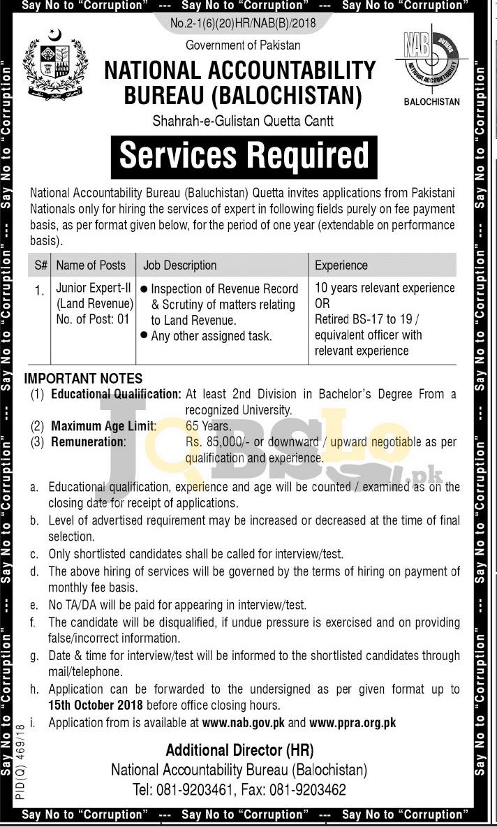 NAB Jobs 2018 Balochistan Application Form Download For Junior Expert II