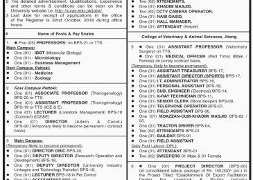 UVAS Jobs 02 October 2018 University of Veterinary & Animal Sciences Application Form Download