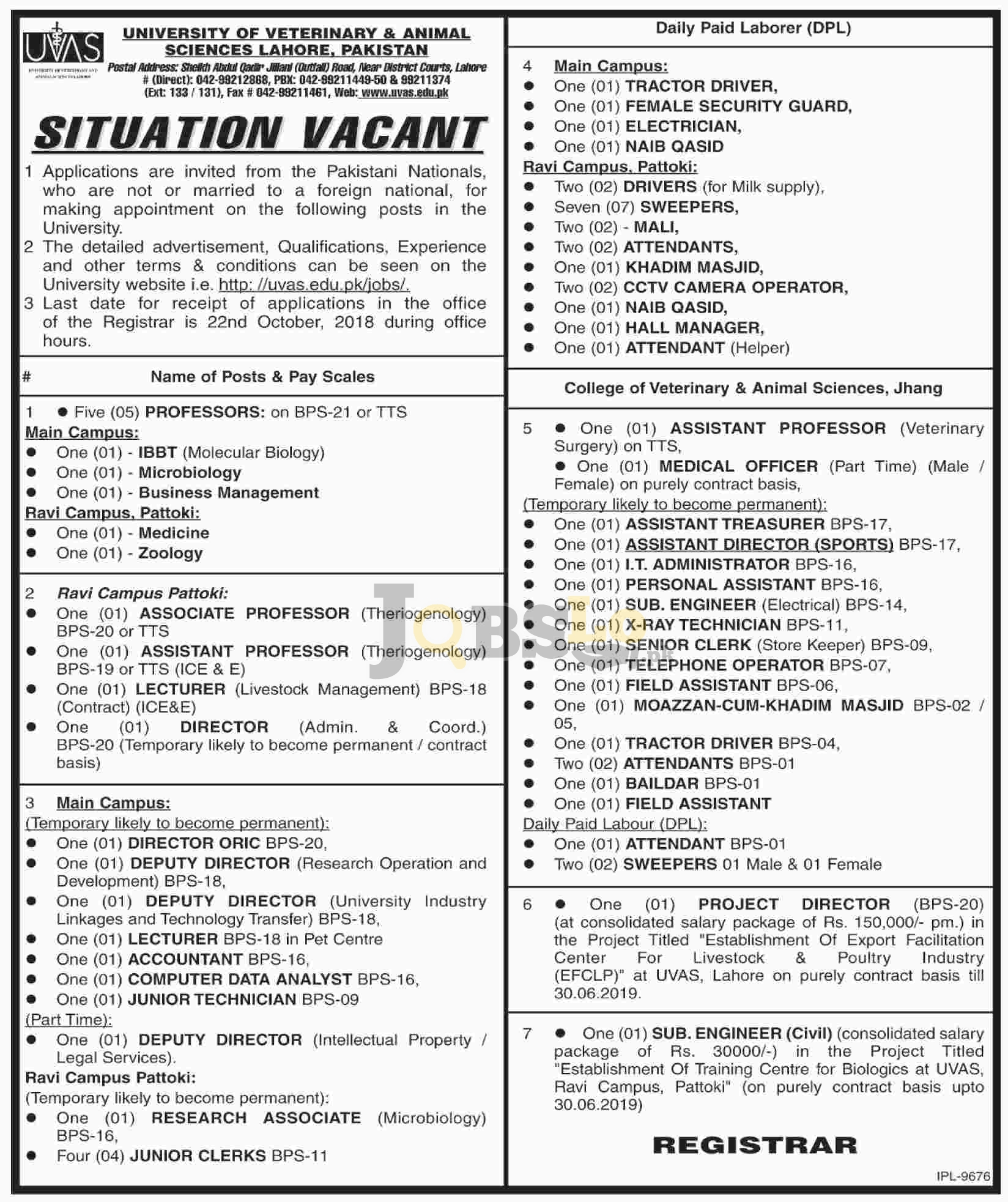 UVAS Jobs 02 October 2018 University of Veterinary & Animal Sciences Application Form Download