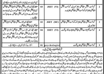 Jobs in Special Education Department 2019 Sialkot For Honorary Teaching Assistant
