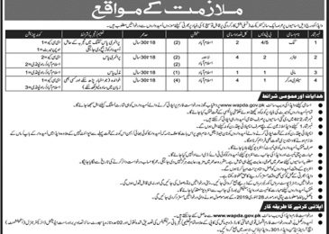 WAPDA Jobs 2019 in Lahore Application Form | www.wapda.gov.pk