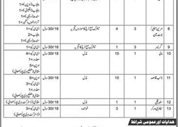 WAPDA Jobs 2019 Tarbela Dam Project Application Form Latest