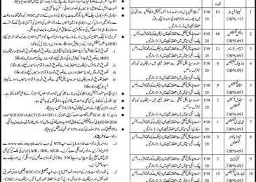 Health Department Jobs 2019 Jamshoro NTS Online Application Form