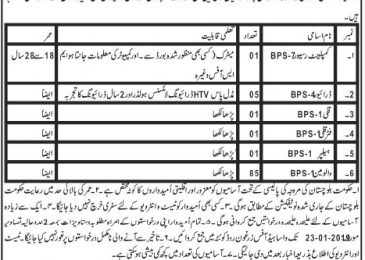 WASA Quetta Jobs 2019 Water & Sanitation Authority latest