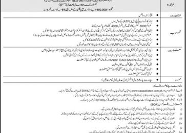 Civil Aviation Authority CAA Pakistan Jobs 2019 Application Form | www.caapakistan.com.pk