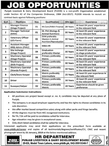 PLDDB jobs 2019 Punjab Livestock & Dairy Development Board Application Form