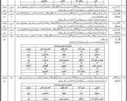 Sindh Police IT Cadre Jobs 2019 PTS Application Form Download Latest