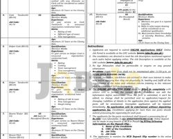 Lahore High Court Jobs 2019 Application Form Latest Advertisement
