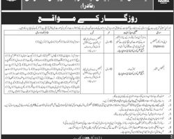 NADRA Islamabad Jobs May 2019 For Intelligence Officer & Deputy Director Vigilance