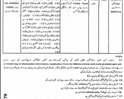 Jobs in Education Department Govt of Punjab Jun 2019 Application Form Latest