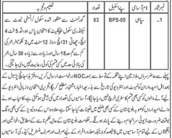 Levies Force Balochistan Jobs June 2019 Latest Ddvertisement