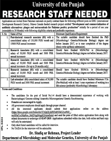 Punjab University Lahore Jobs 2019 Application Form Download Latest