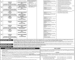 Junior Traffic Warden Jobs 2019 in Punjab Police Department Apply Online   ppsc.gop.pk