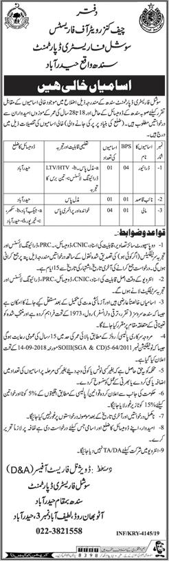 Forest Department Sindh Jobs 2019 Latest Advertisement