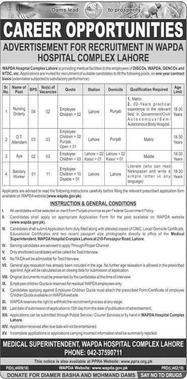 WAPDA Hospital Lahore Jobs 2019 Application Form Download Online